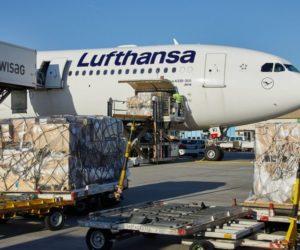 Ryanair dichiara guerra al finanziamento di Lufthansa